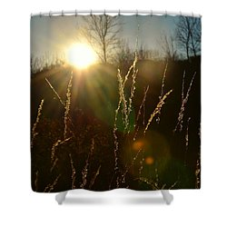 Shower Curtain featuring the photograph Solar Flares by Nikki McInnes