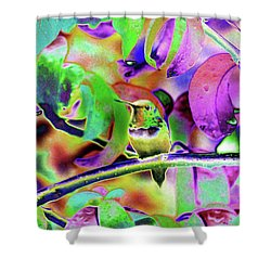 Shower Curtain featuring the photograph Solarized Hummer by Wendy McKennon