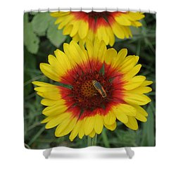 Soldier On Fire Shower Curtain