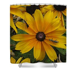 Soldiers On Patrol Shower Curtain