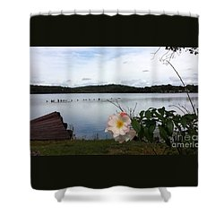 Shower Curtain featuring the photograph Solitaire  by Becky Lupe