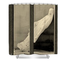 Solitary Confinement Shower Curtain by Ed Smith