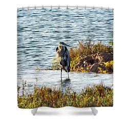 Solitary Heron Shower Curtain by Audrey Van Tassell