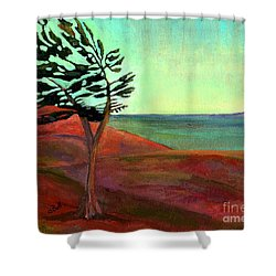 Solitary Pine Shower Curtain by Claire Bull