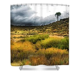 Shower Curtain featuring the photograph Solitary Pine by Frank Wilson