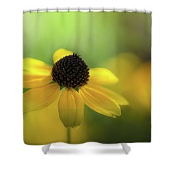Solitary Suzy Shower Curtain