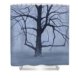 Solitude  Sold Shower Curtain