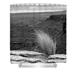 Solitude Shower Curtain by Alex Galkin