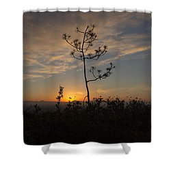 Shower Curtain featuring the photograph Solitude At Solidad by Jeremy McKay