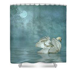 Solitude Shower Curtain by Brian Tarr