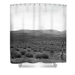 Shower Curtain featuring the photograph Solitude by Eric Christopher Jackson