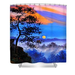 Shower Curtain featuring the painting Solitude by Karen Showell