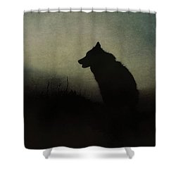 Shower Curtain featuring the digital art Solitude by Nicole Wilde