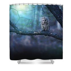 Solitude - Square Shower Curtain