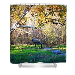Solitude Under The Sycamore Shower Curtain by Carol Groenen