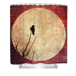 Solivagant Shower Curtain