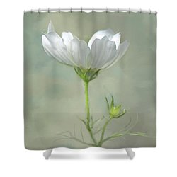 Solo Cosmo Shower Curtain by Ann Bridges