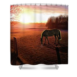 Solstice Sunrise Shower Curtain