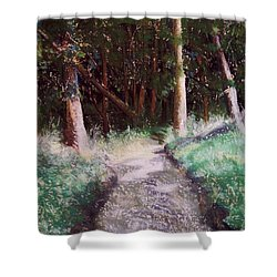 Solveigs Journey Shower Curtain