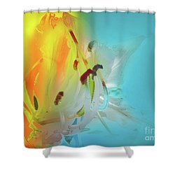 Sombras De Luz Shower Curtain