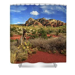 Some Cactus In Sedona Shower Curtain by James Eddy