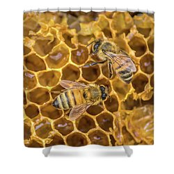 Shower Curtain featuring the photograph Some Of Your Beeswax by Bill Pevlor