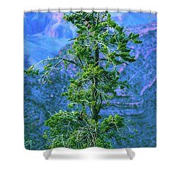 Someday Never Comes Shower Curtain