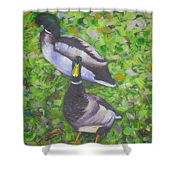 Somerset Ducks Shower Curtain