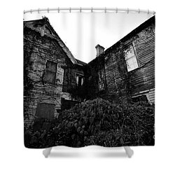 Something In The Window Shower Curtain by David Lee Thompson