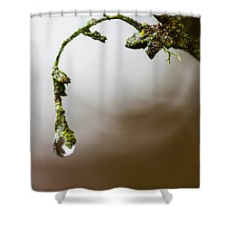 Sometimes It's Hard To Let Go Shower Curtain by Mark Alder