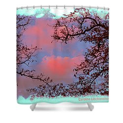 Sometimes Quiet La Vernia Is Wild Shower Curtain by Carolina Liechtenstein