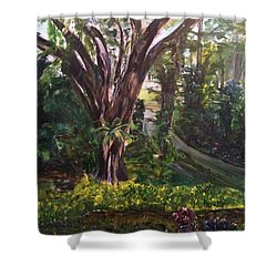 Somewhere In The Park Shower Curtain by Belinda Low