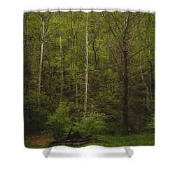 Shower Curtain featuring the photograph Somewhere In The Woods by Shane Holsclaw