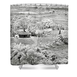 Somewhere In Vinales Shower Curtain by Eduard Moldoveanu