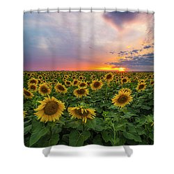 Shower Curtain featuring the photograph Somewhere Sunny  by Aaron J Groen