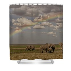 Somewhere Under The Rainbow Shower Curtain by Gary Hall
