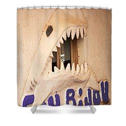 Sonbijou Shower Curtain by Jez C Self