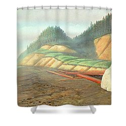 Song For My Brother Shower Curtain by Laurie Stewart