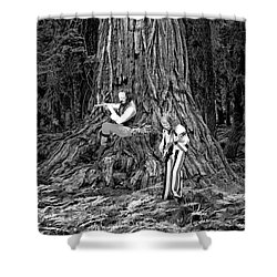 Shower Curtain featuring the photograph Songs In The Woods by Ben Upham