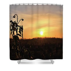 Sonnenuntergang Shower Curtain