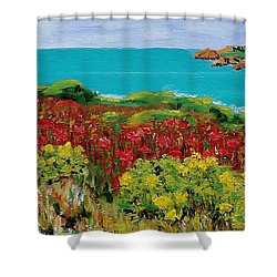 Sonoma Coast With Wildflowers Shower Curtain
