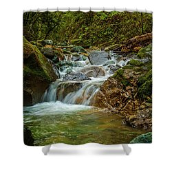 Shower Curtain featuring the photograph Sonoma Valley Creek by Bill Gallagher