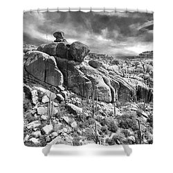 Sonora Desert Shower Curtain