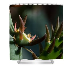 Sonora Macro IIi Shower Curtain by Carolina Liechtenstein