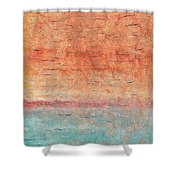 Sonoran Desert #1 Southwest Vertical Landscape Original Fine Art Acrylic On Canvas Shower Curtain