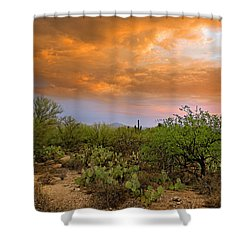 Shower Curtain featuring the photograph Sonoran Desert H11 by Mark Myhaver