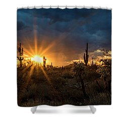 Shower Curtain featuring the photograph Sonoran Gold At Sunset  by Saija Lehtonen