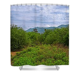 Shower Curtain featuring the photograph Sonoran Greenery H30 by Mark Myhaver
