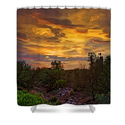 Shower Curtain featuring the photograph Sonoran Sonata H01 by Mark Myhaver