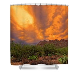 Shower Curtain featuring the photograph Sonoran Sonata H16 by Mark Myhaver